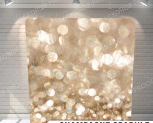 Pillow_CHAMPAGNESPARKLE_G-X2-300x276